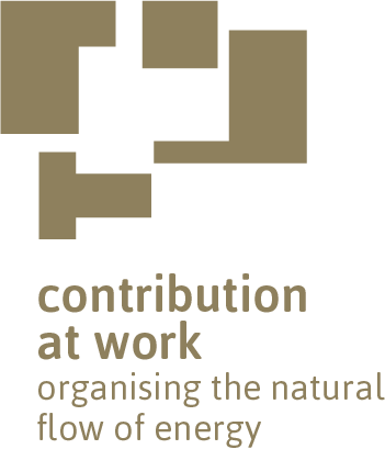 organisation improvement | contribution at work Retina Logo